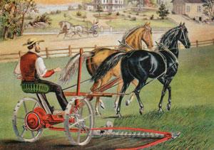 Газонокосилка на конной тяге